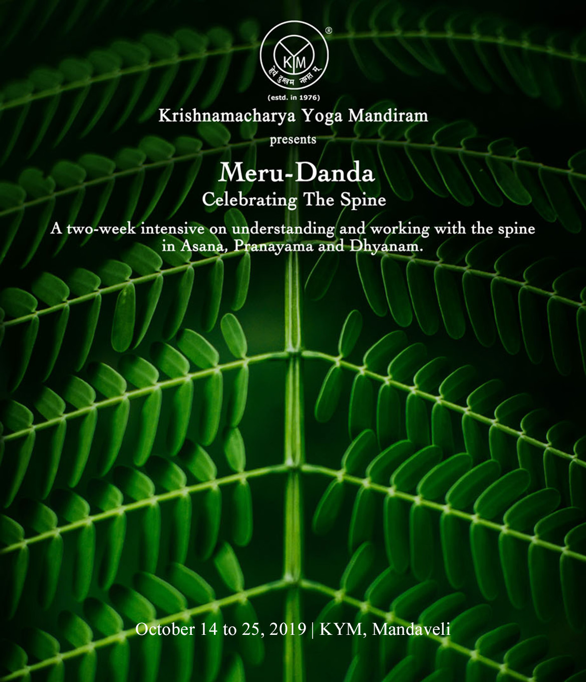 Meru Danda | Celebrating The Spine