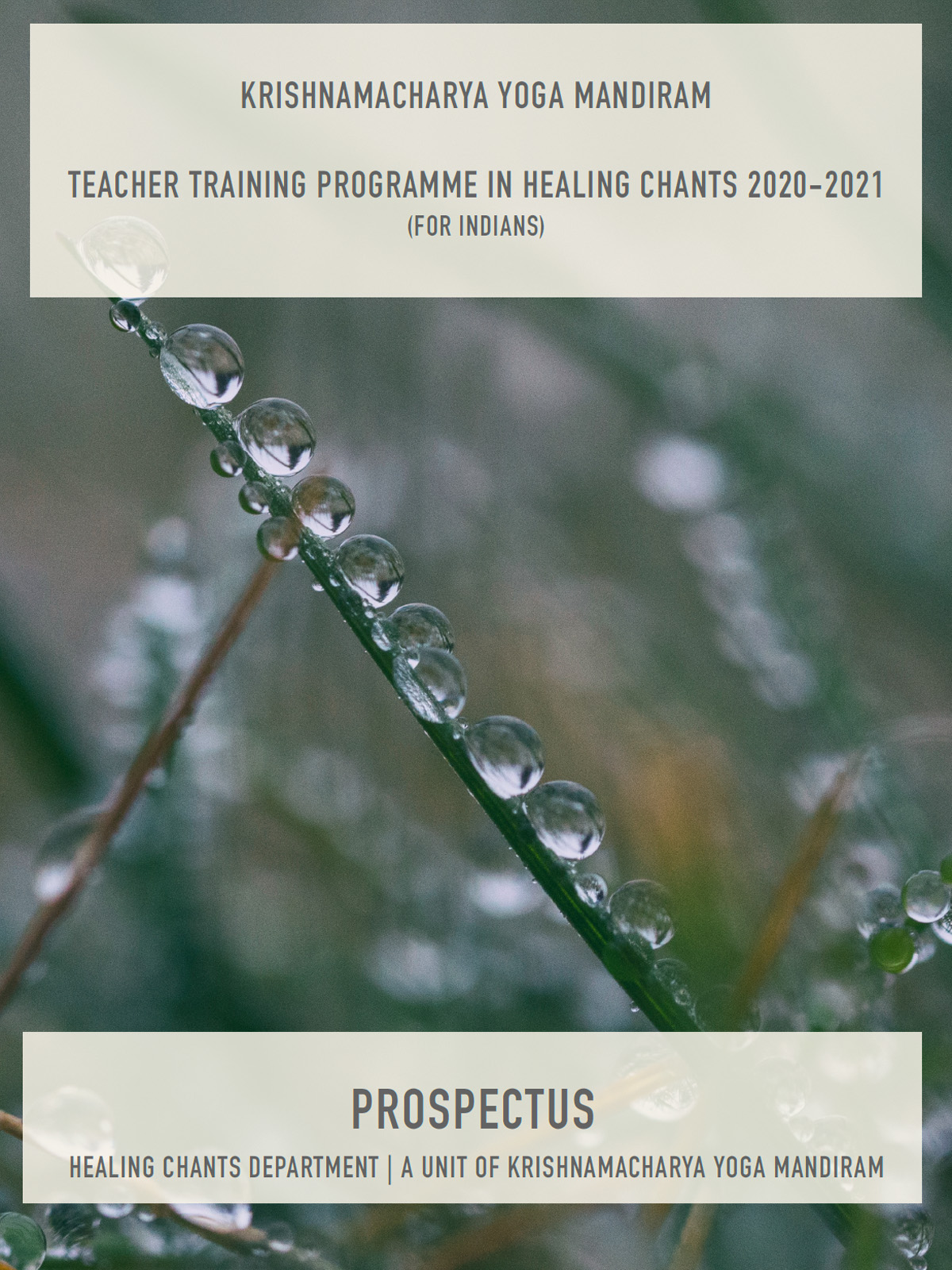 Healing Chants Teacher Training Programme 2020-21 (For Indians)